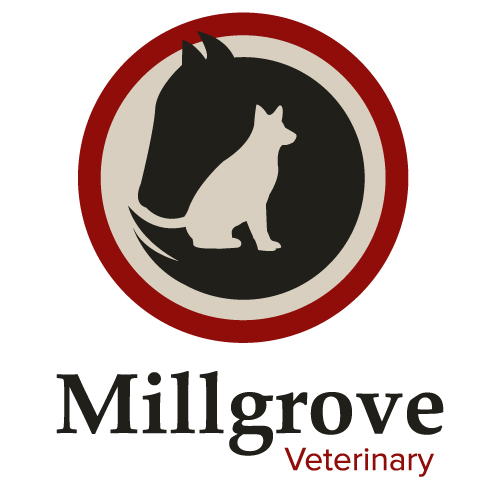 Millgrove Veterinary